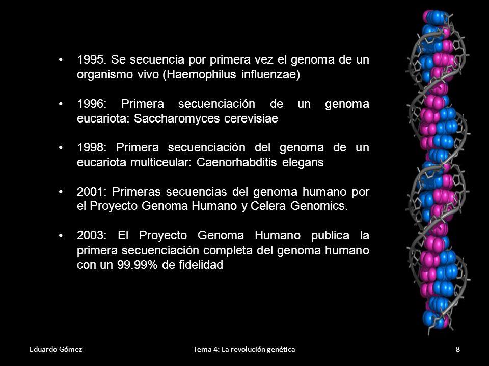 Eduardo GómezTema 4: La revolución genética9 Antes de Mendel Preformismo: La observación de espermatozoides con un microscopio en el s.XVIII hizo creer que tras la fecundación, solo por crecimiento, estos daban individuos adultos.