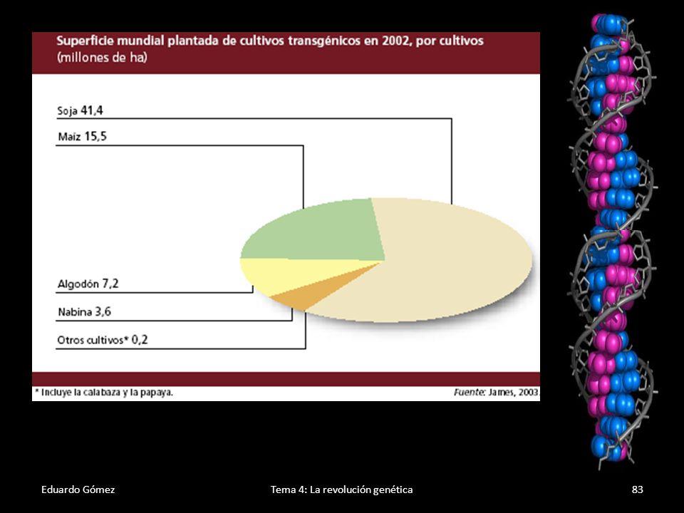 Efectos negativos Eduardo GómezTema 4: La revolución genética84 1.El uso masivo de cultivos transgénicos representa riesgos potenciales desde un punto de vista ecológico.
