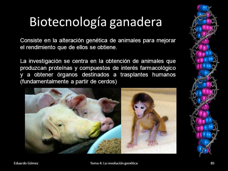 Eduardo GómezTema 4: La revolución genética86