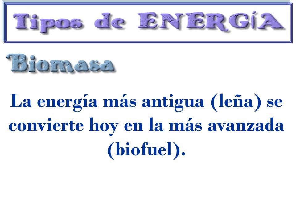 La energía más antigua (leña) se convierte hoy en la más avanzada (biofuel).