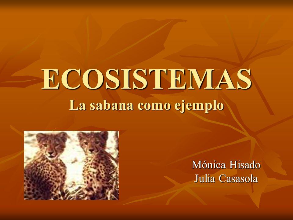 ECOSISTEMAS La sabana como ejemplo Mónica Hisado Julia Casasola