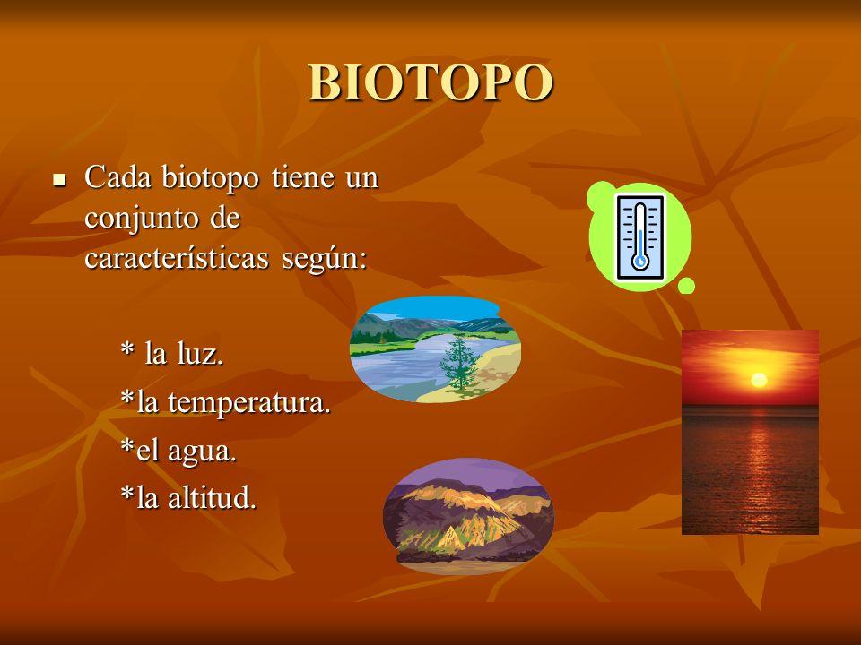 BIOTOPO Cada biotopo tiene un conjunto de características según: Cada biotopo tiene un conjunto de características según: * la luz. * la luz. *la temp