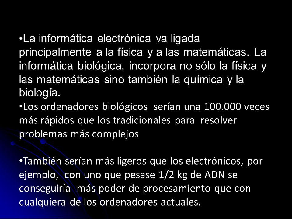 La informática electrónica va ligada principalmente a la física y a las matemáticas. La informática biológica, incorpora no sólo la física y las matem