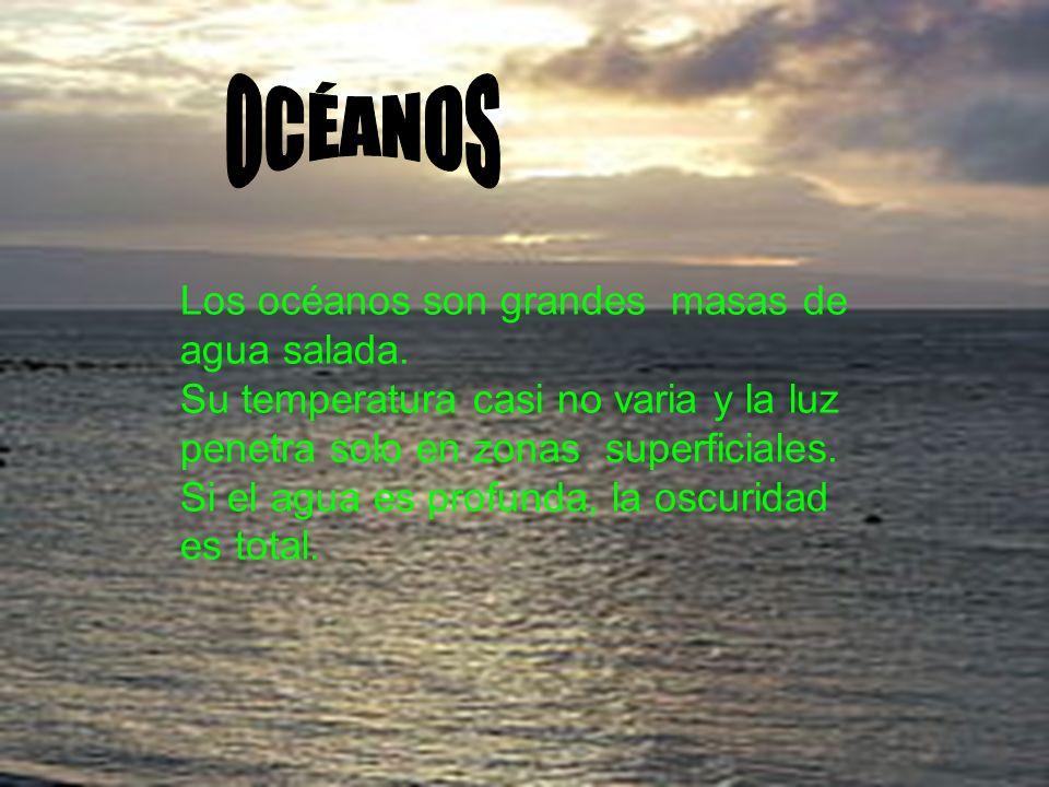 Los océanos son grandes masas de agua salada. Su temperatura casi no varia y la luz penetra solo en zonas superficiales. Si el agua es profunda, la os
