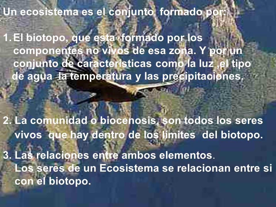 Un ecosistema es el conjunto formado por: 1.El biotopo, que esta formado por los componentes no vivos de esa zona. Y por un conjunto de característica