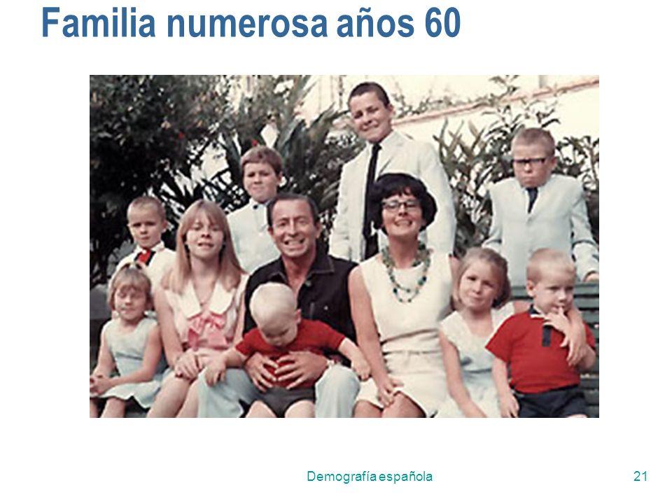 Demografía española21 Familia numerosa años 60