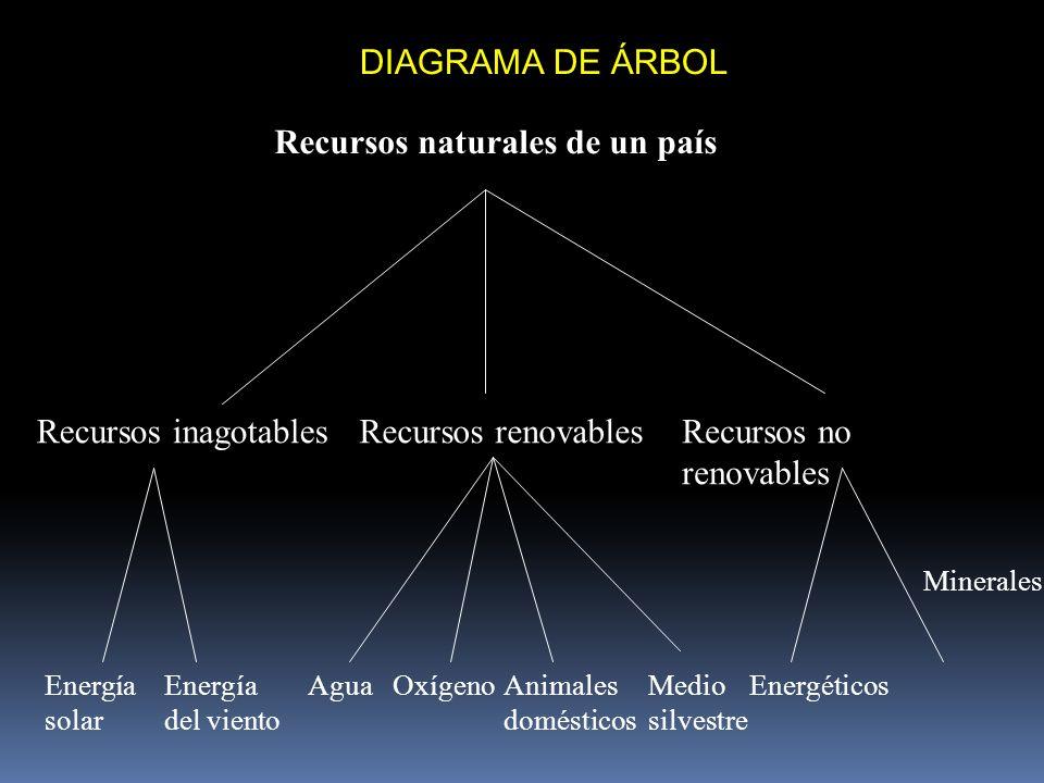 DIAGRAMA DE ÁRBOL Minerales Recursos naturales de un país Recursos inagotablesRecursos renovablesRecursos no renovables Energía solar Energía del vien