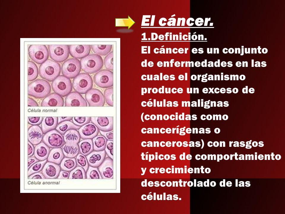El cáncer. 1.Definición. El cáncer es un conjunto de enfermedades en las cuales el organismo produce un exceso de células malignas (conocidas como can
