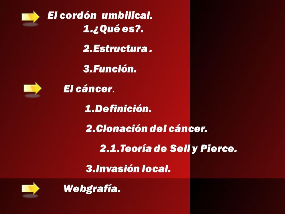 1.¿Qué es?. 2.Estructura. 3.Función. El cáncer. 1.Definición. 2.Clonación del cáncer. 2.1.Teoría de Sell y Pierce. 3.Invasión local. Webgrafía. El cor