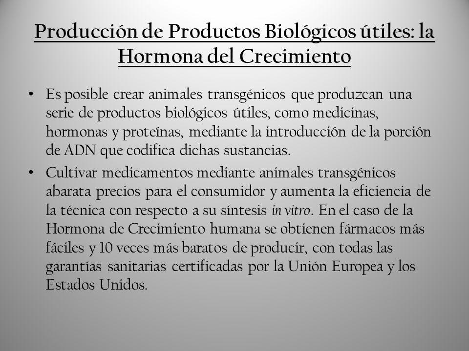 Webgrafía Artículo La Granja Transgénica publicado en Público el 27/10/2009: http://www.publico.es/ciencias/264192/granja/transgenica Artículo Animales Transgénicos del especial Transgénicos publicado en el portal Tecnociencia en Diciembre de 2003: http://www.tecnociencia.es/especiales/transgenicos/5.htm#52 Artículo Animales Transgénicos de Jean-Pierre Herveg y Maritza Barcia-Macay publicado en la web de la Facultad de Medicina de la Université Catholique de Louvain: http://genemol.org/biomolespa/organismo-transgenicos/animales-transgenicos.html