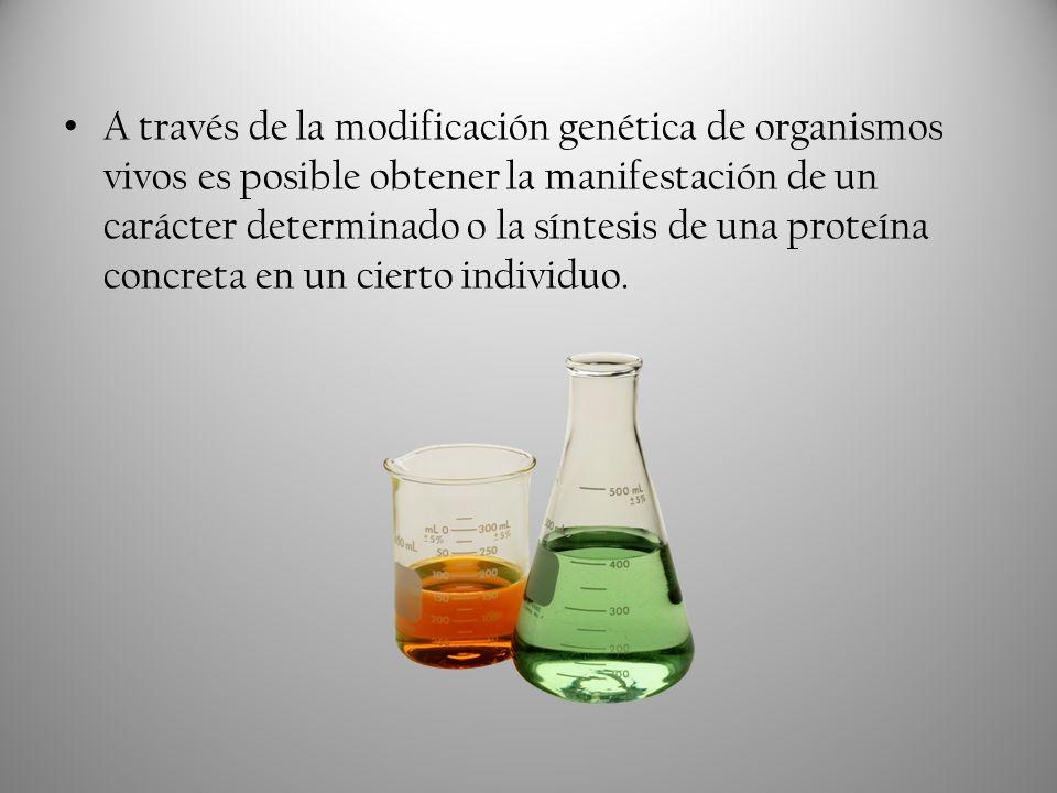 Estas aplicaciones de la Ingeniería Genética pueden facilitar la disponibilidad de dicha sustancia en los colectivos que la necesitan por medio del aumento mesurado de su abundancia.