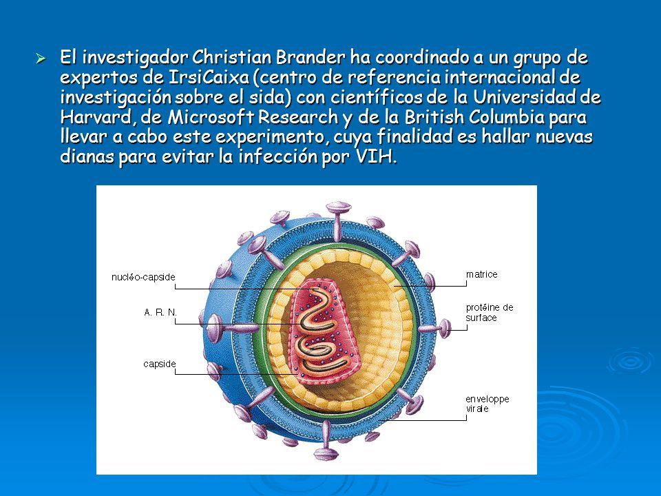 El investigador Christian Brander ha coordinado a un grupo de expertos de IrsiCaixa (centro de referencia internacional de investigación sobre el sida