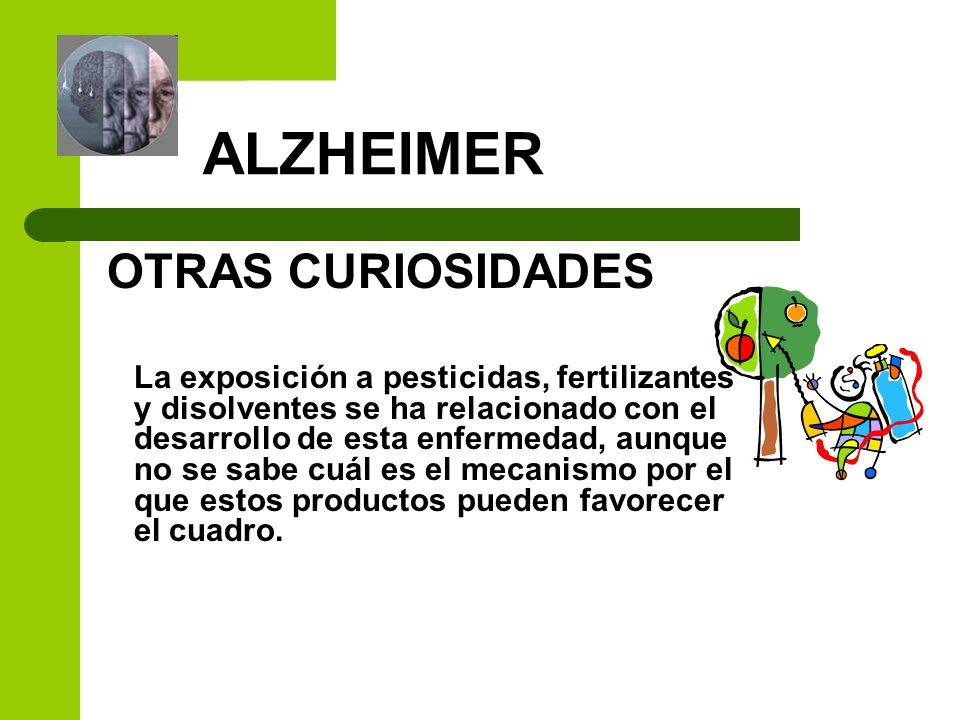 ALZHEIMER OTRAS CURIOSIDADES La exposición a pesticidas, fertilizantes y disolventes se ha relacionado con el desarrollo de esta enfermedad, aunque no