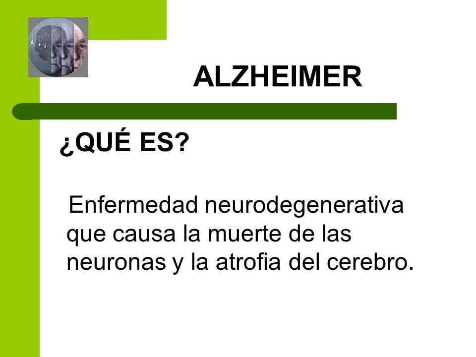 ALZHEIMER ¿QUÉ ES? Enfermedad neurodegenerativa que causa la muerte de las neuronas y la atrofia del cerebro.