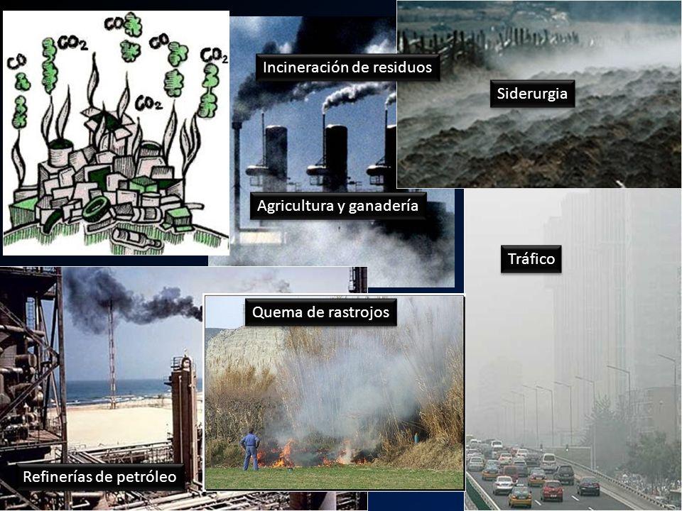 u Incineración de residuos Siderurgia Tráfico Quema de rastrojos Refinerías de petróleo Agricultura y ganadería