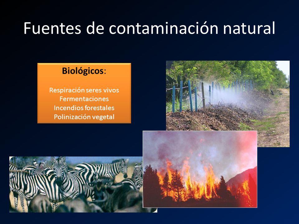 Fuentes de contaminación natural Biológicos: Respiración seres vivos Fermentaciones Incendios forestales Polinización vegetal Biológicos: Respiración