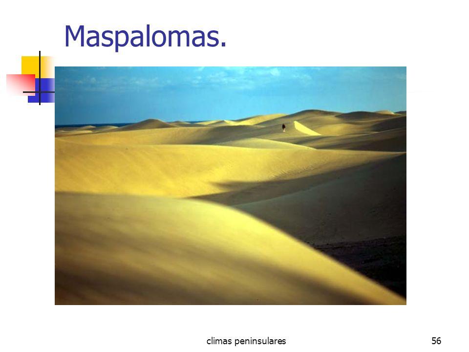 climas peninsulares56 Maspalomas.