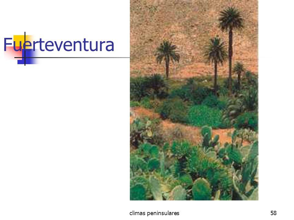 climas peninsulares58 Fuerteventura