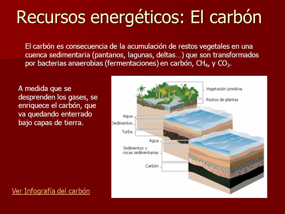 Recursos energéticos: El carbón Ver Infografía del carbón El carbón es consecuencia de la acumulación de restos vegetales en una cuenca sedimentaria (