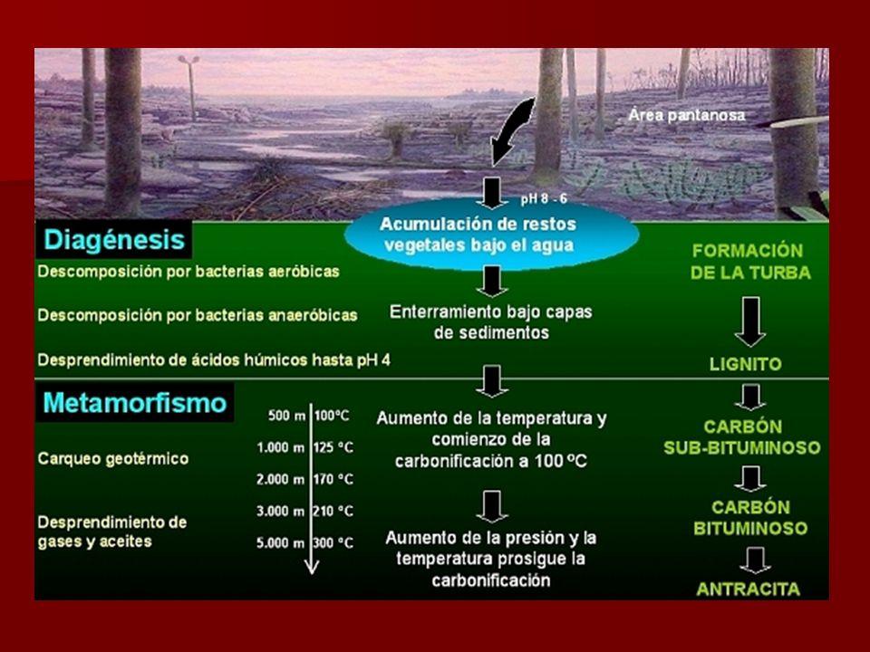 Extracción del petróleo Hay varias fases: Estudios geológicos Anomalías gravimétricas Sondeos Perforación y bombeo Ascenso natural Ascenso por la presión del gas o por inyección de fluidos Oleoductos Petroleros Extracción Transporte Localización del petróleo