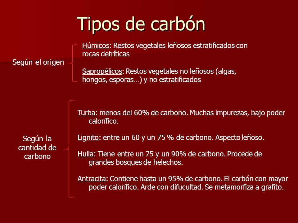 Tipos de carbón Según el origen Húmicos: Restos vegetales leñosos estratificados con rocas detríticas Sapropélicos: Restos vegetales no leñosos (algas
