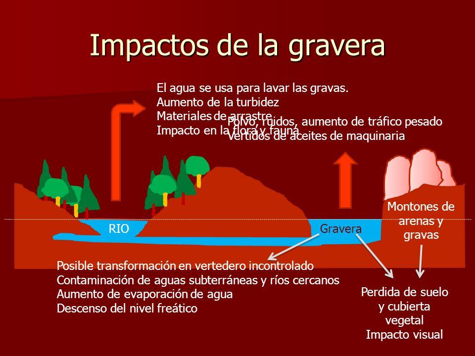 Impactos de la gravera El agua se usa para lavar las gravas. Aumento de la turbidez Materiales de arrastre Impacto en la flora y fauna Montones de are