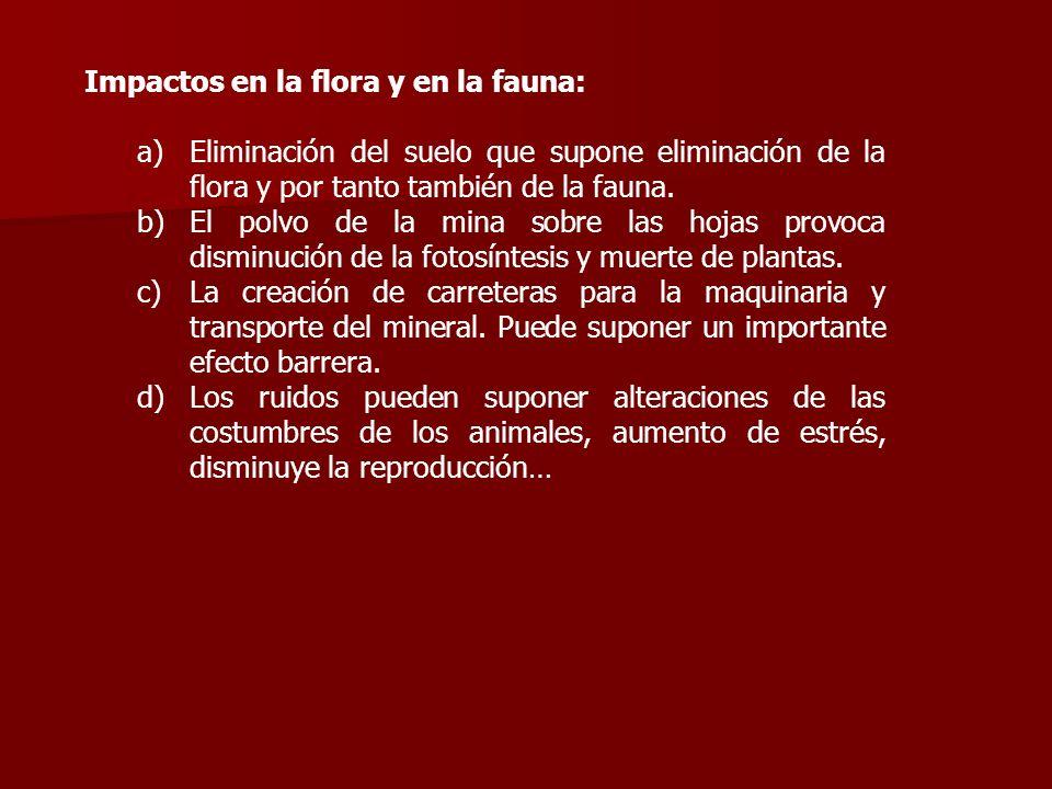 Impactos en la flora y en la fauna: a)Eliminación del suelo que supone eliminación de la flora y por tanto también de la fauna. b)El polvo de la mina