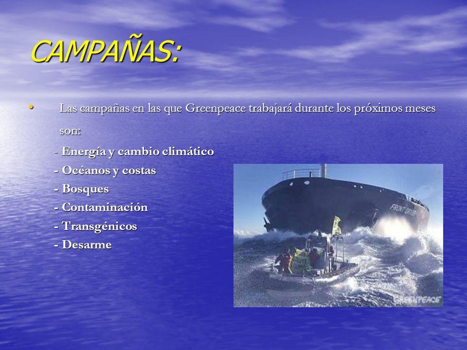 CAMPAÑAS: Las campañas en las que Greenpeace trabajará durante los próximos meses son: Las campañas en las que Greenpeace trabajará durante los próxim