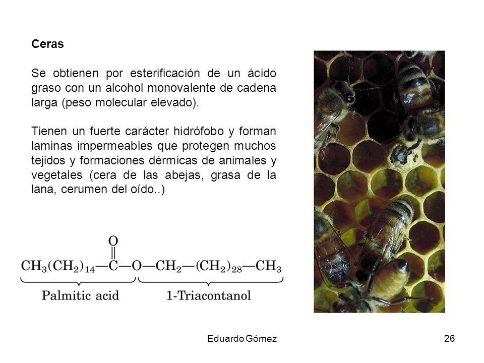 Ceras Se obtienen por esterificación de un ácido graso con un alcohol monovalente de cadena larga (peso molecular elevado). Tienen un fuerte carácter