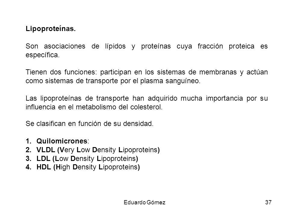 Lipoproteínas. Son asociaciones de lípidos y proteínas cuya fracción proteica es específica. Tienen dos funciones: participan en los sistemas de membr