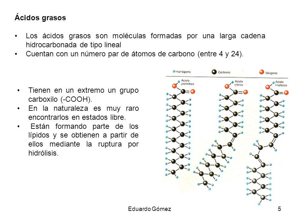 Ácidos grasos Los ácidos grasos son moléculas formadas por una larga cadena hidrocarbonada de tipo lineal Cuentan con un número par de átomos de carbo