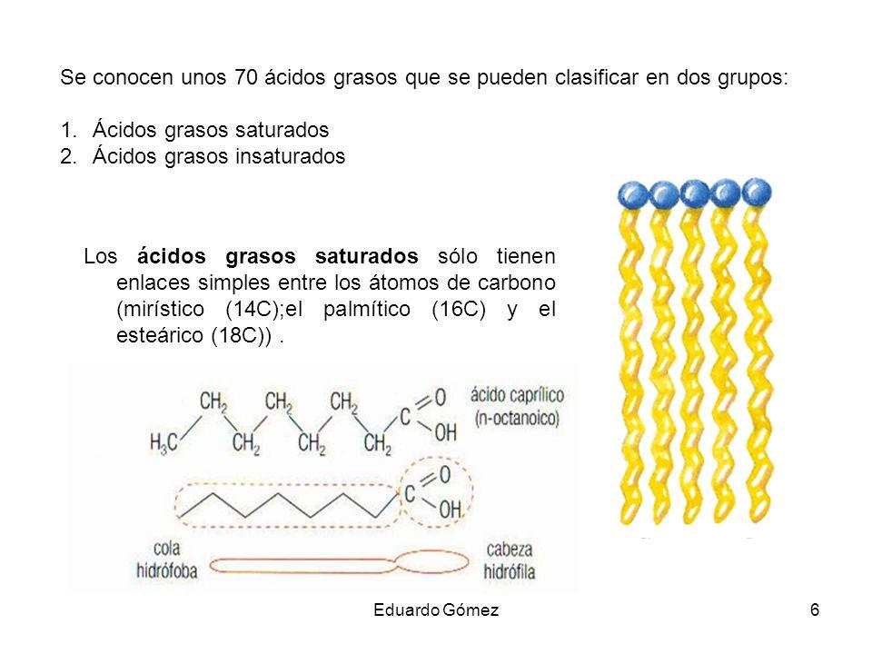 Se conocen unos 70 ácidos grasos que se pueden clasificar en dos grupos: 1.Ácidos grasos saturados 2.Ácidos grasos insaturados Los ácidos grasos satur