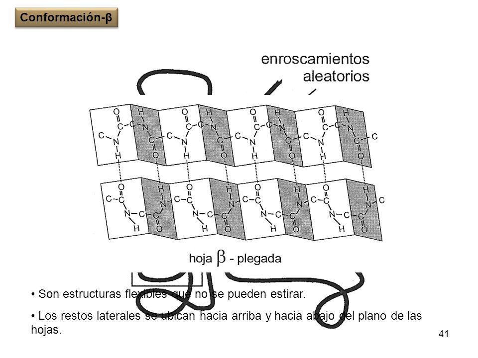 41 Son estructuras flexibles que no se pueden estirar. Los restos laterales se ubican hacia arriba y hacia abajo del plano de las hojas. Conformación-