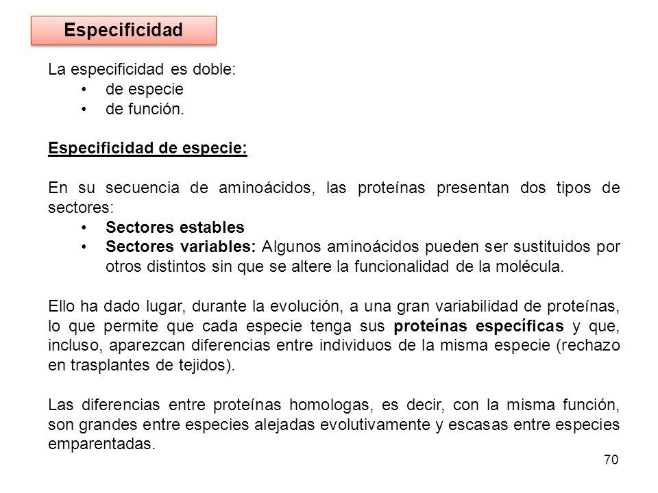 La especificidad es doble: de especie de función. Especificidad de especie: En su secuencia de aminoácidos, las proteínas presentan dos tipos de secto