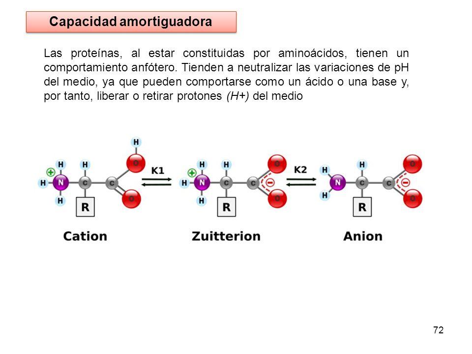 Las proteínas, al estar constituidas por aminoácidos, tienen un comportamiento anfótero. Tienden a neutralizar las variaciones de pH del medio, ya que