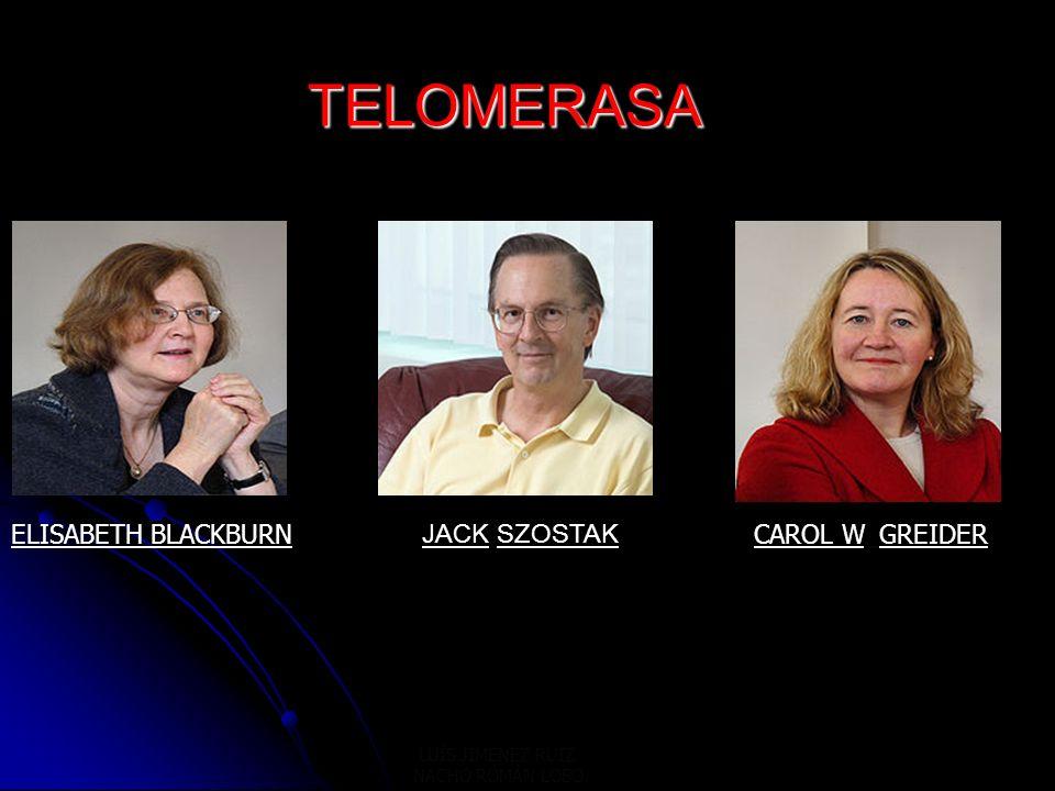 TELOMERASA TELOMERASA JACK SZOSTAK ELISABETH BLACKBURNCAROL W. GREIDER LUÍS JIMENEZ RUIZ NACHO ROMÁN LOBO