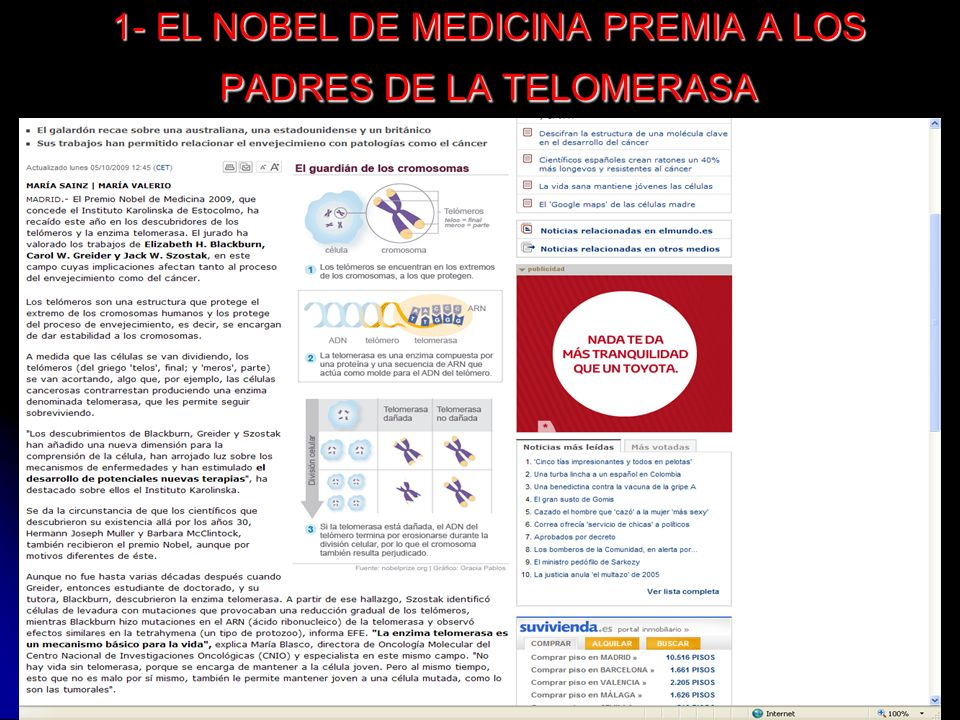 1- EL NOBEL DE MEDICINA PREMIA A LOS PADRES DE LA TELOMERASA