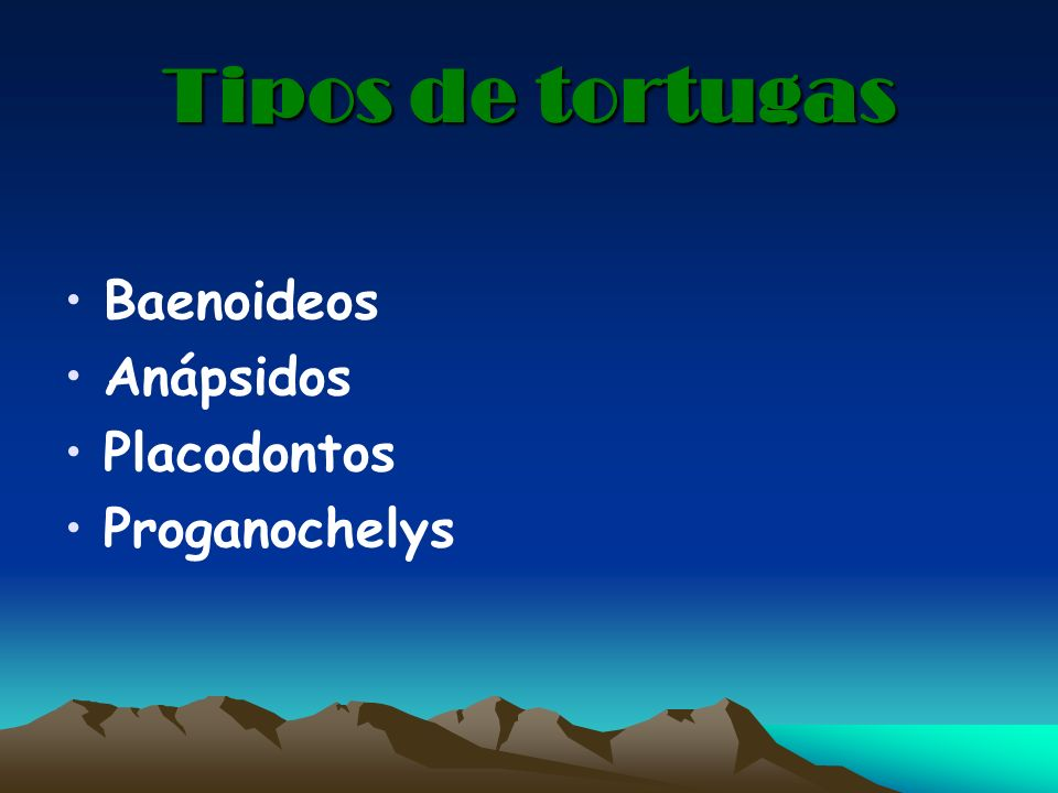 Tipos de tortugas Baenoideos Anápsidos Placodontos Proganochelys