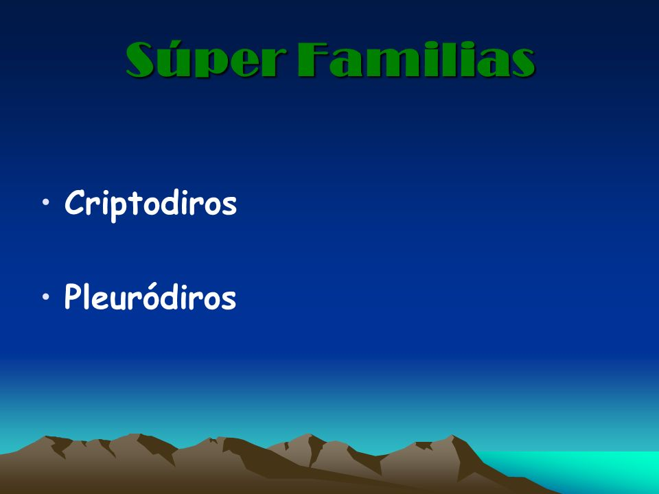 Súper Familias Criptodiros Pleuródiros