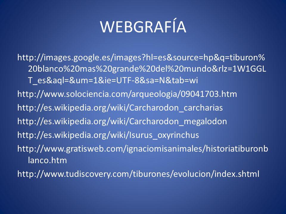 WEBGRAFÍA http://images.google.es/images?hl=es&source=hp&q=tiburon% 20blanco%20mas%20grande%20del%20mundo&rlz=1W1GGL T_es&aql=&um=1&ie=UTF-8&sa=N&tab=
