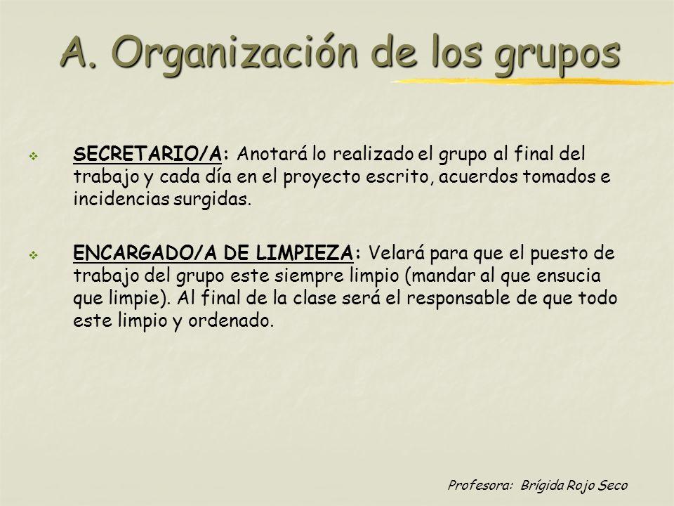 Profesora: Brígida Rojo Seco A. Organización de los grupos SECRETARIO/A: Anotará lo realizado el grupo al final del trabajo y cada día en el proyecto