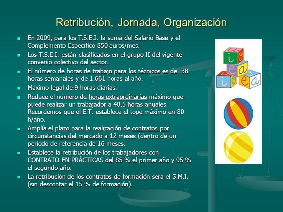 Retribución, Jornada, Organización En 2009, para los T.S.E.I. la suma del Salario Base y el Complemento Específico 850 euros/mes. En 2009, para los T.