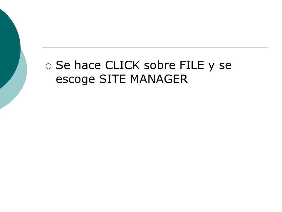 Se hace CLICK sobre FILE y se escoge SITE MANAGER