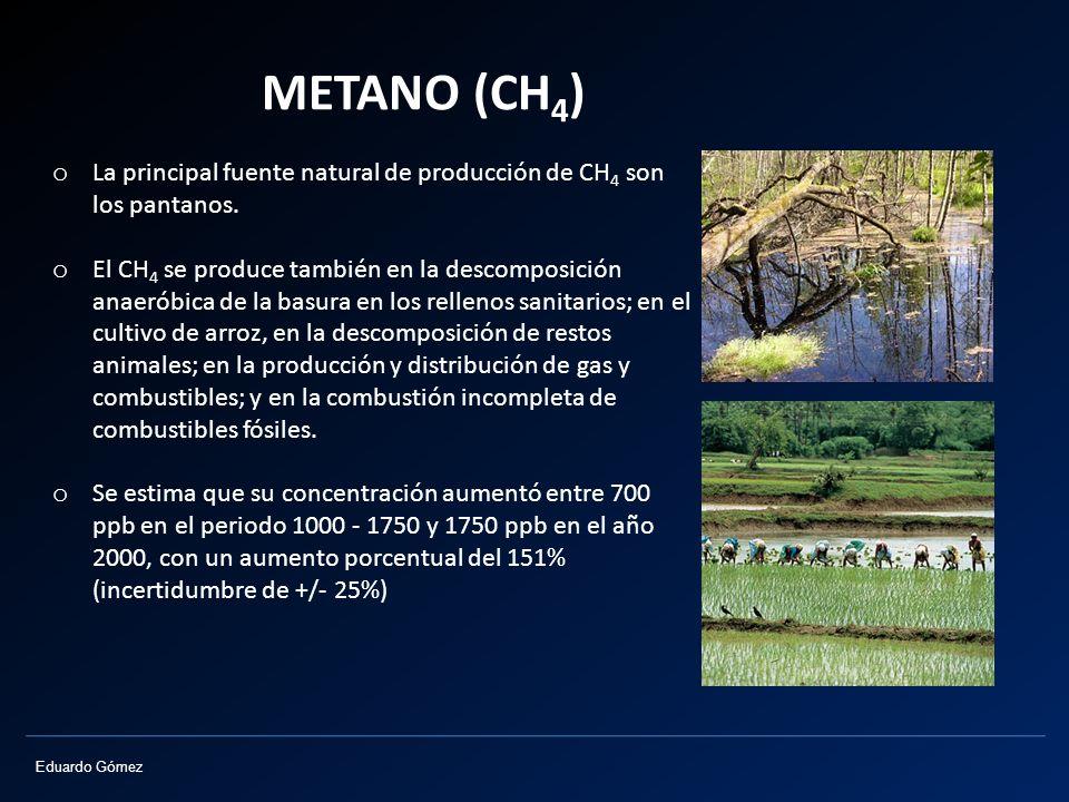 Eduardo Gómez METANO (CH 4 ) o La principal fuente natural de producción de CH 4 son los pantanos. o El CH 4 se produce también en la descomposición a