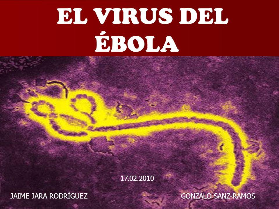 1 EL VIRUS DEL ÉBOLA JAIME JARA RODRÍGUEZ GONZALO SANZ-RAMOS 17.02.2010