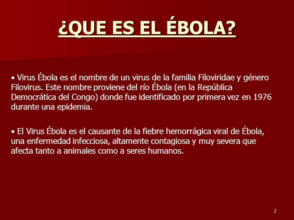 2 ¿QUE ES EL ÉBOLA? Virus Ébola es el nombre de un virus de la familia Filoviridae y género Filovirus. Este nombre proviene del río Ébola (en la Repúb