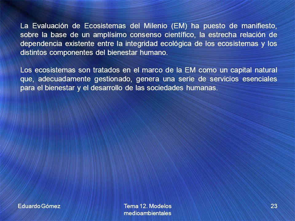 Eduardo GómezTema 12. Modelos medioambientales 23 La Evaluación de Ecosistemas del Milenio (EM) ha puesto de manifiesto, sobre la base de un amplísimo