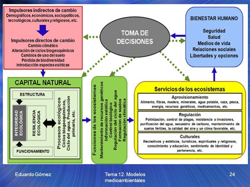 Eduardo GómezTema 12. Modelos medioambientales 24