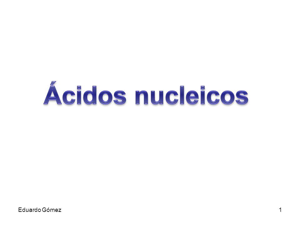 Los ácidos nucleicos están formados por cadenas de nucleótidos, unidos por enlaces covalentes entre la molécula de azúcar de un nucleótido (el carbono 3´ de la ribosa o de la desoxirribosa) y la molécula de fosfato del siguiente nucleótido que a su vez está unido al carbono 5´ de la pentosa.