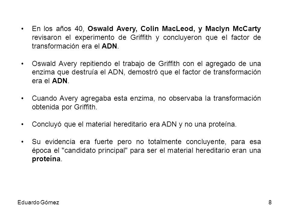 En los años 40 (19..), Oswald Avery, Colin MacLeod, y Maclyn McCarty revisaron el experimento de Griffith y concluyeron que el factor de transformación era el ADN.